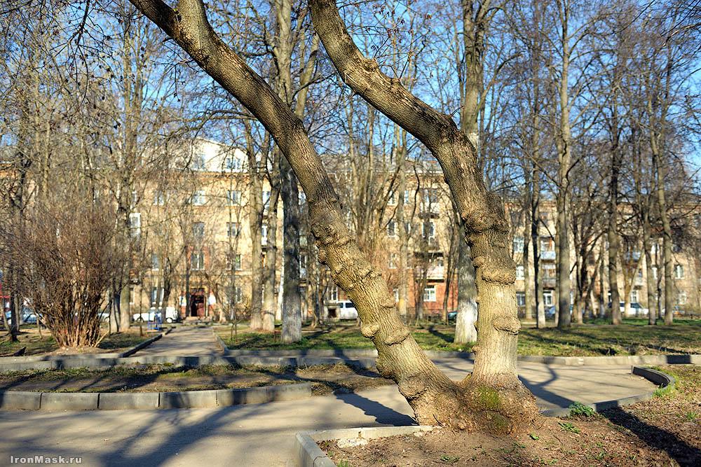 Жуковский старый двор
